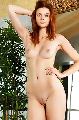 Klara Playboy